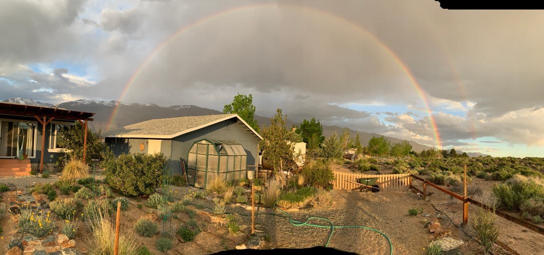 rainbow chalfant
