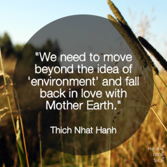 tnh earth